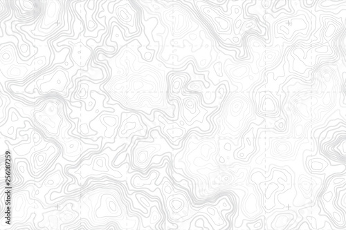 Pinturas sobre lienzo  Abstract Blank Detailed Topographic Contour Map Subtle White Vector Background