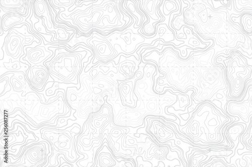 Abstract Blank Detailed Topographic Contour Map Subtle White Vector Background Fototapeta