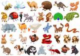 Fototapeta Fototapety na ścianę do pokoju dziecięcego - Set of cartoon animal