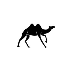 Camel Logo Design Template,vin...