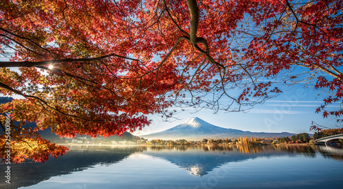 In de dag Blauwe jeans Colorful Autumn Season and Mountain Fuji with morning fog and red leaves at lake Kawaguchiko is one of the best places in Japan