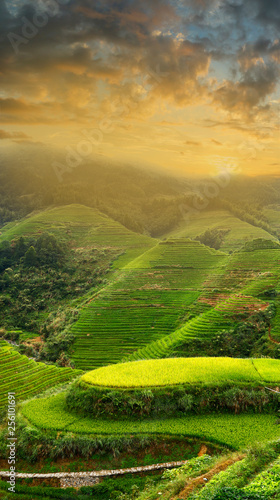 Sunset on the rice filed terrace in the countryside of Dazhai ,Shanxi province ,China Wall mural