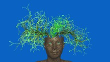 Woodland Fairy, Dryad With Leaves , Branches , Vines Growing From Head. 3d Animation