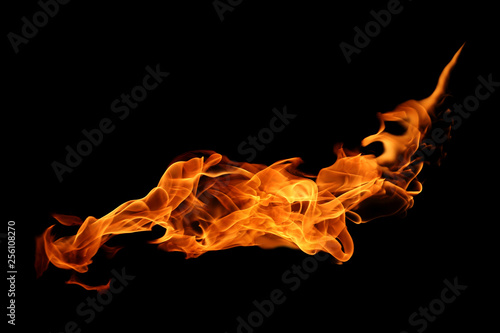 Canvas Prints Fire / Flame movement of fire flames isolated on black background