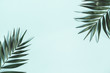 Leinwandbild Motiv Summer composition. Tropical palm leaves on pastel blue background. Summer concept. Flat lay, top view, copy space