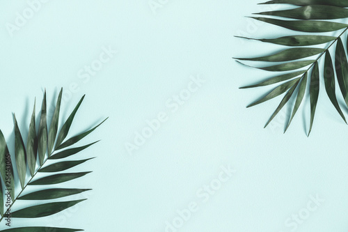 Summer composition. Tropical palm leaves on pastel blue background. Summer concept. Flat lay, top view, copy space
