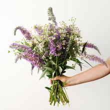 Beautiful Bouquet Of Wildflowers