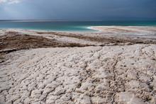 Beautiful Green White Salty Coastline Of Dead Sea In Jordan