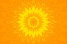 Orange Flower Pattern Floral K...