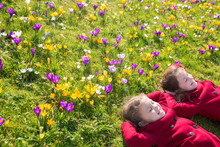 Spring Sunny Day, First Flowers And Happy Children.