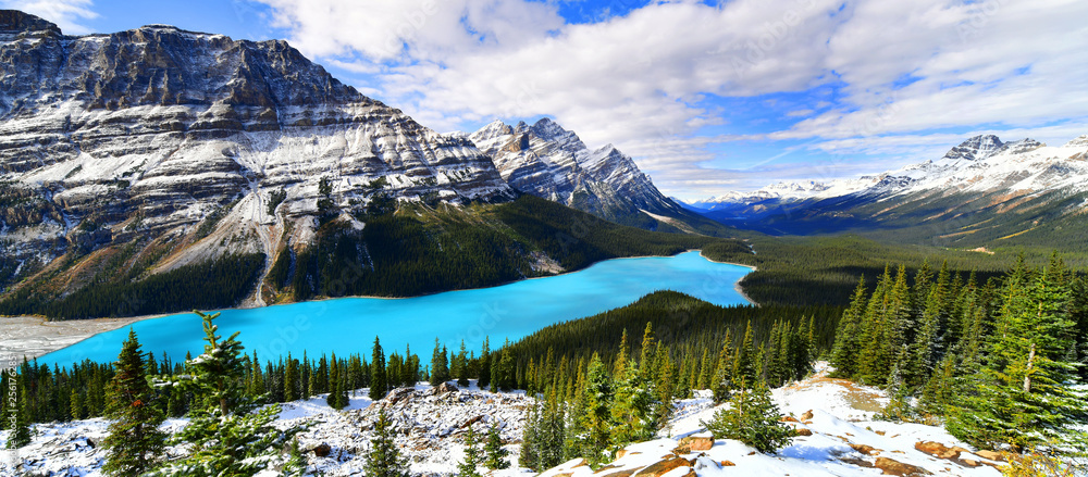 Fototapeta View from Bow Summit of Peyto lake in Banff National Park, Alberta, Canada.
