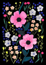 Pink Flowers In Black Background