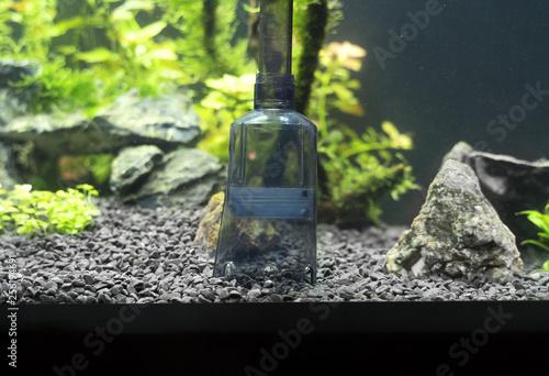 Valokuva  Siphon gravel cleaner tool in the aquarium.
