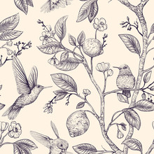 Vector Sketch Pattern With Birds And Flowers. Hummingbirds And Flowers, Retro Style, Nature Backdrop. Vintage Monochrome Flower Design For Wrapping Paper, Cover, Textile, Fabric, Wallpaper