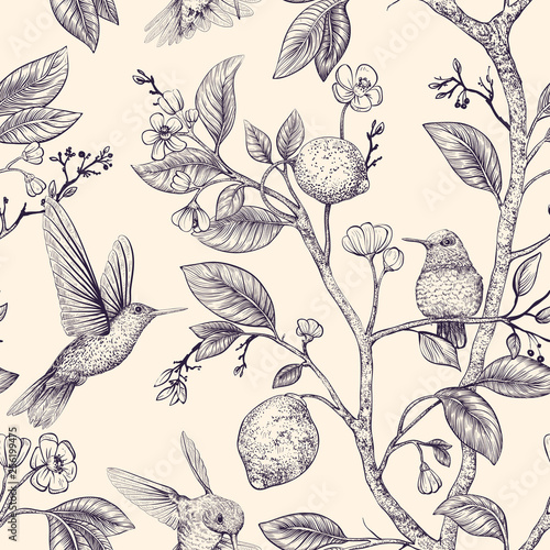 Vector sketch pattern with birds and flowers. Hummingbirds and flowers, retro style, nature backdrop. Vintage monochrome flower design for wrapping paper, cover, textile, fabric, wallpaper - fototapety na wymiar
