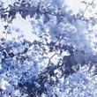 Blue floral composition