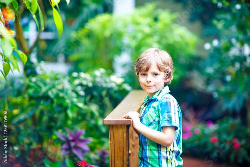 Foto  Little blond preschool kid boy discovering flowers, plants and butterflies at botanic garden
