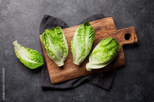 Mini romaine lettuce salad Canvas Print