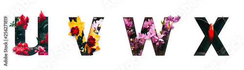 Photo  Flower font letter u, v, w, x Create with real alive flowers and Precious paper cut shape of alphabet