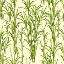 Sugar Cane Exotic Plant Seamle...