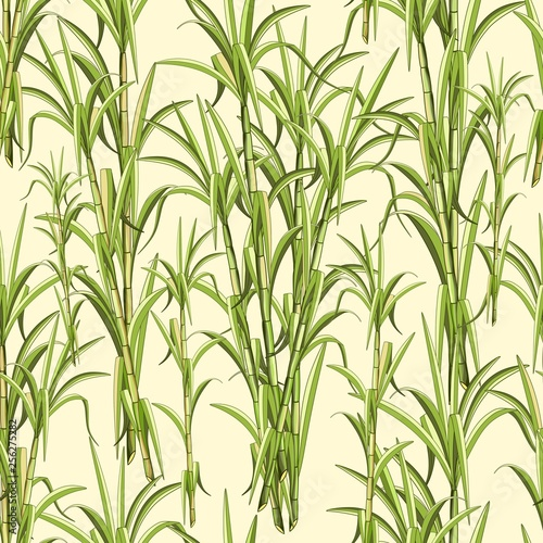 Spoed Foto op Canvas Draw Sugar Cane Exotic Plant Seamless Pattern Vector Design