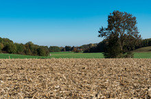 Green Hill And Corn Stubble Along Touristic Route Called Romantic Road (Romantische Strasse), Germany. Blue Sky, Space For Text