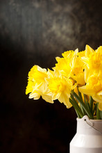 Bunch Of Yellow Daffodils In Vase Against Dark Background