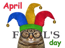 The Funny Cat Is Wearing A Jester Hat And Glasses. April Fools Day. White Background. Isolated.