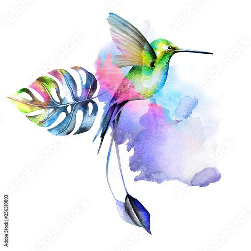 Obraz na płótnie Hummingbird bird surrounded by tropical leaves