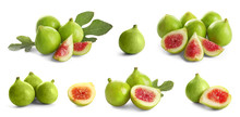 Set Of Delicious Ripe Figs On White Background