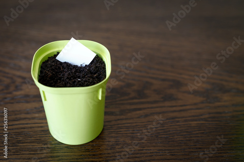 Flower Pot With Earth And White Paper For Writing The Date And Name