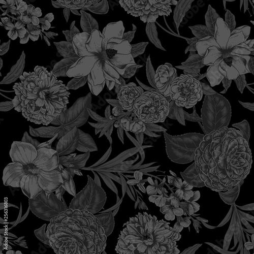 Photo  Black background