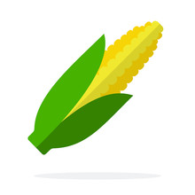 Ear Of Corn Vector Flat Material Design Isolated Object On White Background.