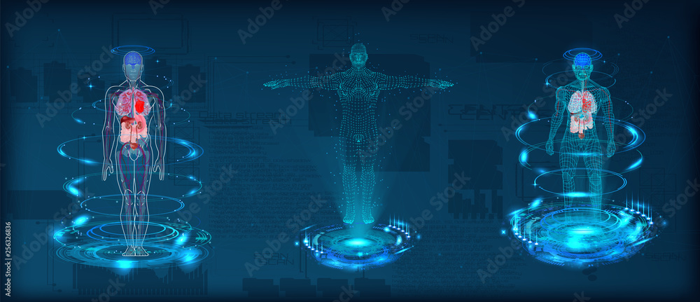 Fototapeta Human body low poly wireframe. Futuristic scan set, human hologram, body x-ray, 3d model in HUD style. Polygonal wireframe mesh with scattered particles and light effects on dark background. Vector