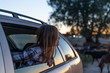 Girl leaning out of car window watching sunset