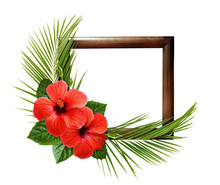 Red Hibiscus Flowers And Palm ...