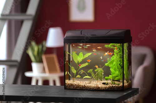 Foto Beautiful aquarium on table in room