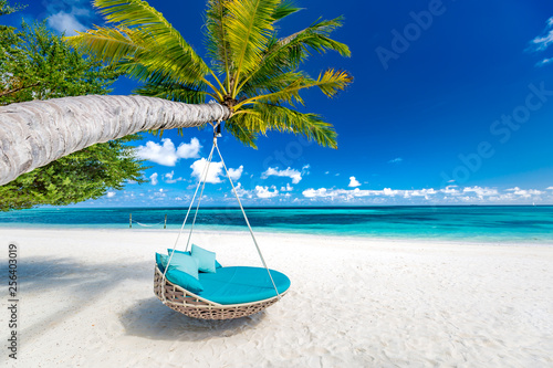 Fototapeta Tropical beach background as summer landscape with beach swing or hammock and white sand and calm sea for beach banner
