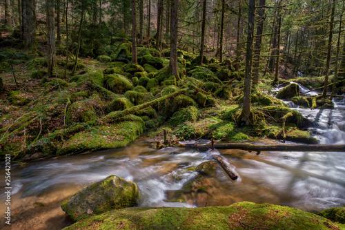 Fototapety, obrazy: Wasserfall mit Steinen voller Moos