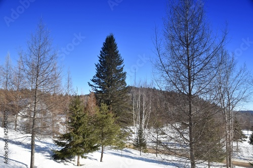 La pose en embrasure Bleu fonce Paysage d'hiver canadien