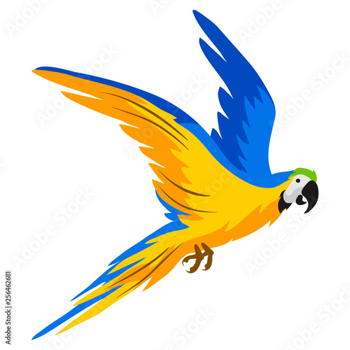 Illustration of macaw parrot. Tropical exotic bird on white background. Fotomurales