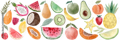 Watercolor Pitaya, banana, coconut, watermelon, papaya, lemon, mango, raspberry, cherry, grapefruit, carambola, avocado, peach, pineapple, melon, strawberry, pear, lime, apple, orange, watermelon,kiwi