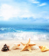 Summer beach. Seashell and starfish on a sand and ocean as background.
