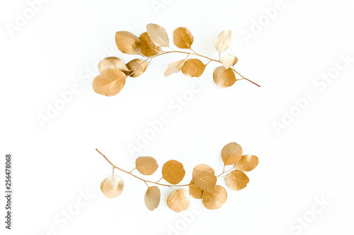 Gold round frame made of gold branches eucalyptus and leaves isolated on white background. lay flat, top view
