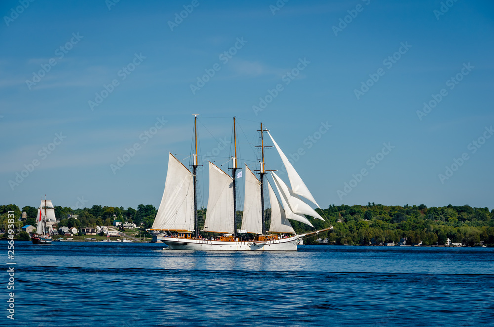 Fototapety, obrazy: Two tall ships under full sail near a coastline