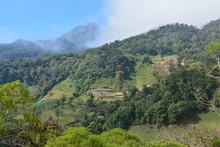 Vue Panoramique Champs Boquete Panama - Panoramic View Fields Panama