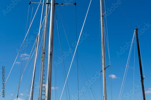 Fotografia  Sailing mast's