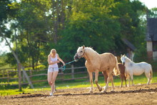 Young Blond Woman With Long Hair, Cowboy In A Pen With Horses On The Ranch