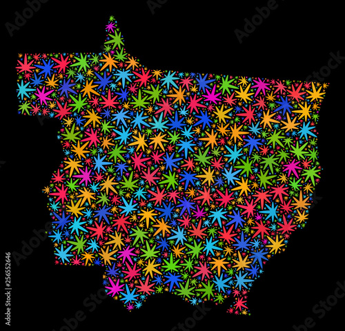 Fotografija  Bright vector marijuana Mato Grosso State map mosaic on a black background