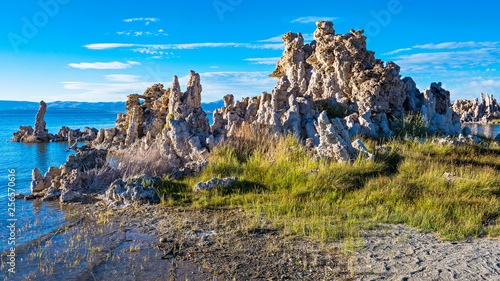 Fotomural Mono Lake Tufa